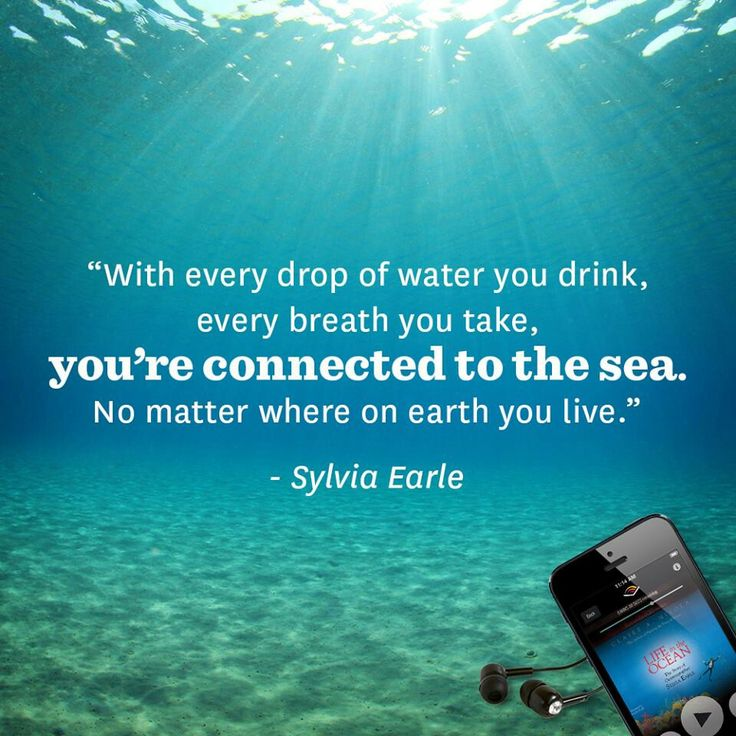 Quotes About Ocean: 22 Best Images About Ocean Quotes: Wisdom From The Deep