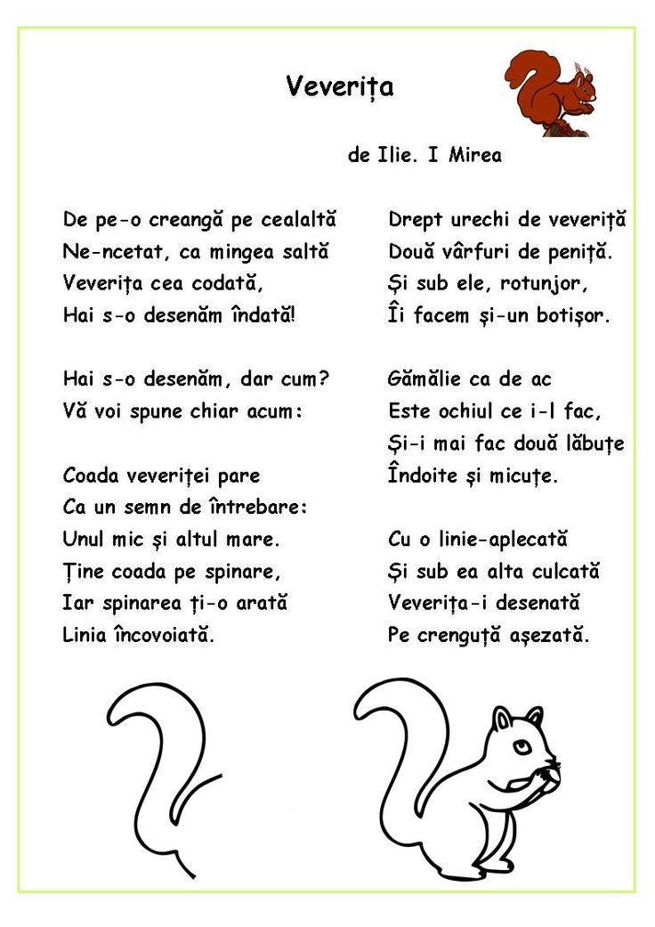 Citim, desenăm, colorăm - Veverița