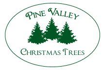 Pine Valley Christmas Trees | Pine valley, Christmas tree ...