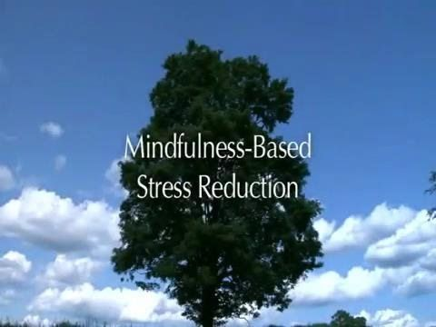 This video is included in the Introduction of the free online Mindfulness-Based Stress Reduction course (MBSR) by Palouse Mindfulness (http://palousemindfuln...