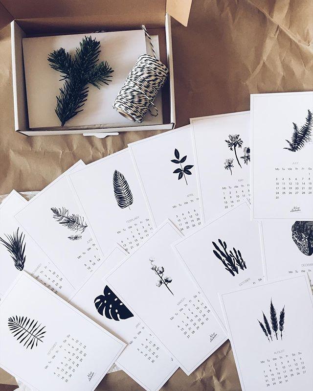 Botanical calendar 2017 - cards 🌿🍃🌵💚 For sale 🌿👌🏻✨ margohupert.pl . #calendar #art #artsy #artwork #goodvibes #botanic #botanical #botanicalillustration #nature #naturelover #greenlover #workshop #workspace #cactu #fern