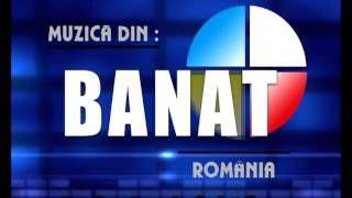Muzica Banat www.banateana.com - YouTube