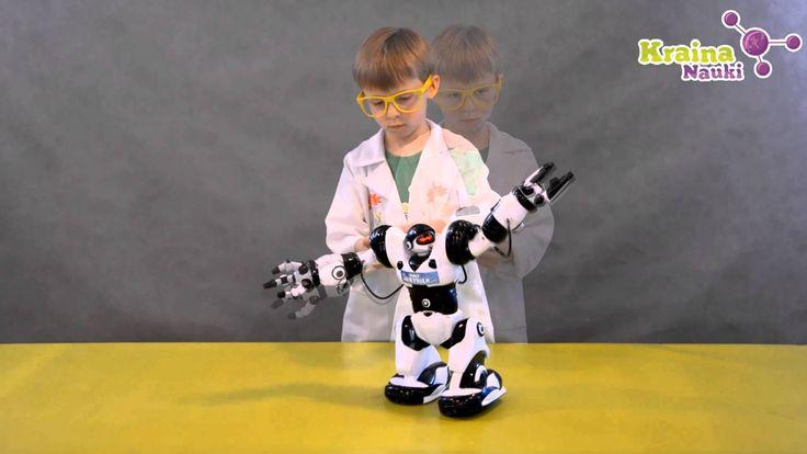 Profesor Kajtek i robot