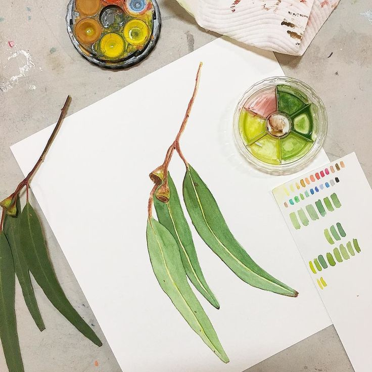 #kgobehindthescenes: Watercolour painting class tonight with @jessieroseford and turning my hand at some botanical illustrations - something I have always been super duper afraid of. I'm definitely feeling a little more confident to tackle realistic subjects and draw what I see from now on. I loved this class and love this beautiful art form !