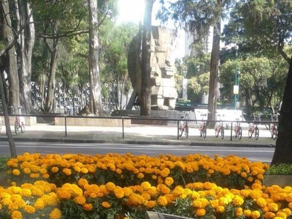 Mexico City Mexico Tour - Mexico City combo tour with a private guide ToursByLocals.com - Mario P. (Guide)