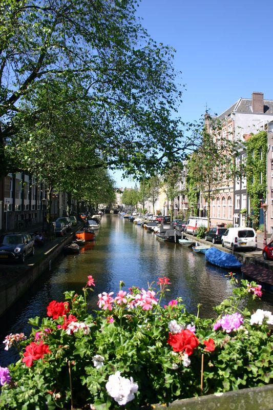 Un grand week-end à Amsterdam Cam&Drey bricolent...