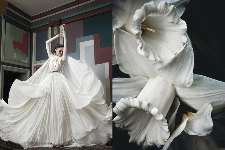 Match #158 Lydie Kochetkova by Saima Altunkaya for L'Officiel Ucraina April 2012 | White daffodils More matches here