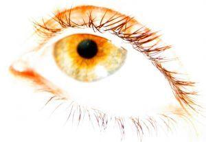 Oczy są zwierciadłem duszy...w przenośni i dosłownie - IRYDOLOGIA, czyli diagnozowanie z oczu - część 2: czym jest  Do czasów współczesnych opracowano i wydano w książkach ponad 30 różnych map topologicznych tęczówki oka.   prof Enji tel. 607 489 251 adres: ul. Czerniakowska 28a WARSZAWA