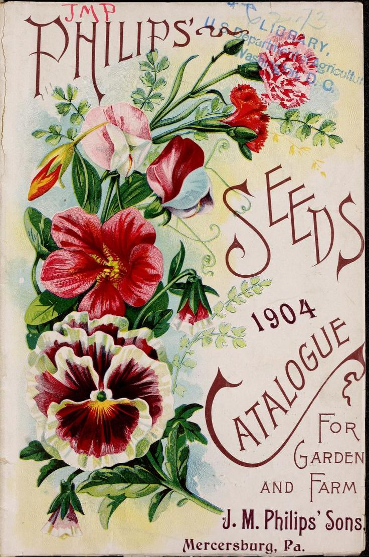 images about GARDEN CATALOGUES AND SEED PACKETS on Pinterest