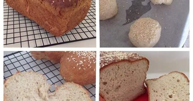 Gluten Free EASY Bread & Rolls