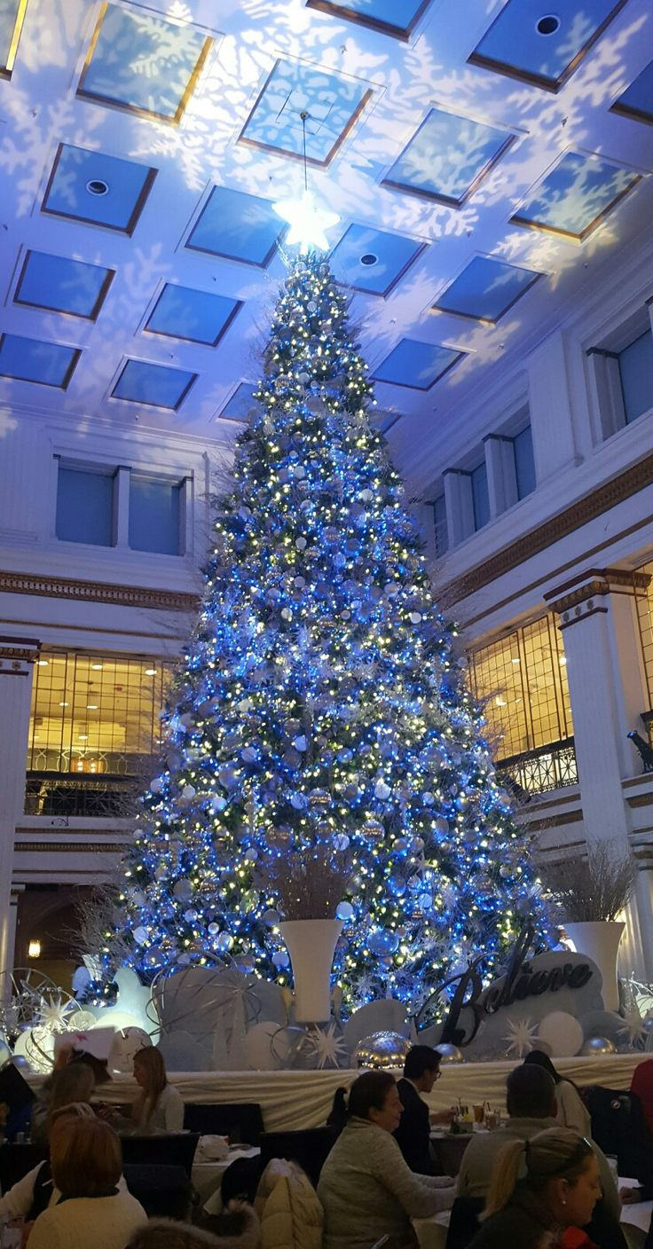 The Macy's 2016 Walnut Room's Christmas tree stands 2 1/2 storeys high.