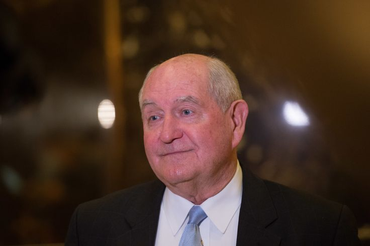 Secretary of agriculture:�Sonny Perdue(BRYAN R. SMITH/AFP/Getty Images) via @AOL_Lifestyle Read more: https://www.aol.com/article/news/2017/04/17/trump-hiring-officials-from-george-w-bush-administration/22043785/?a_dgi=aolshare_pinterest#fullscreen