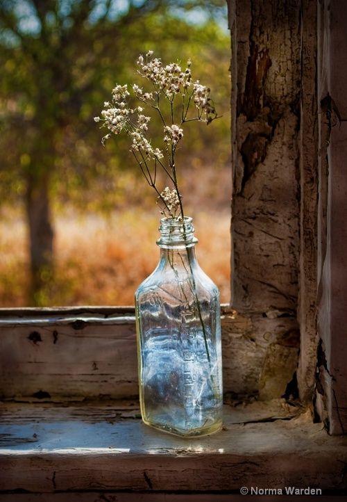 Sweet Country Life ~ Simple Pleasures ~ Faith Hope Love