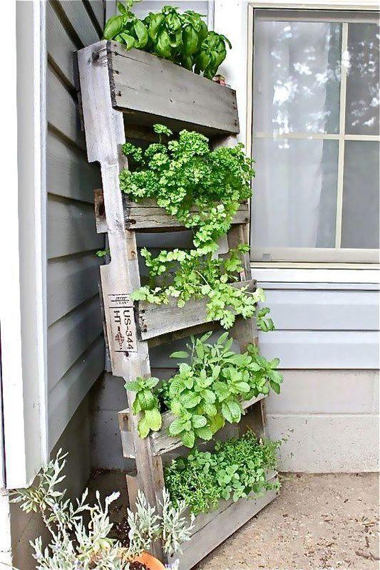 Creatief idee om kruiden te planten