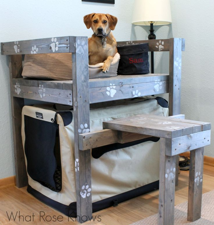 Dog Bunk Bed Idea for saving space and creating an area for your dog to look out the window! #doghouse #dogs #DIYdogbed