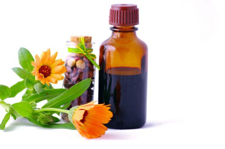 FNIHMATN solicita a COFEPRIS trabajar juntos para impulsar a Industria de Herbolaria y Medicina Alternativa, Tradicional y Naturista - http://plenilunia.com/voluntades-en-accion/fnihmatn-solicita-a-cofepris-trabajar-juntos-para-impulsar-a-industria-de-herbolaria-y-medicina-alternativa-tradicional-y-naturista/44131/