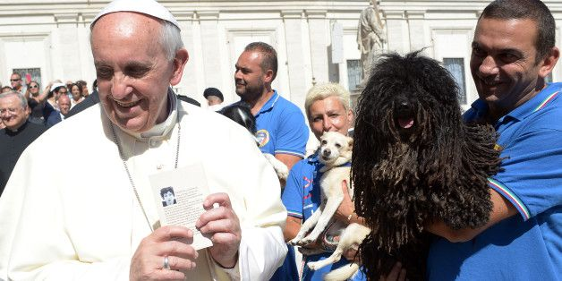Pope Francis Seems To Suggest All Animals Go To Heaven