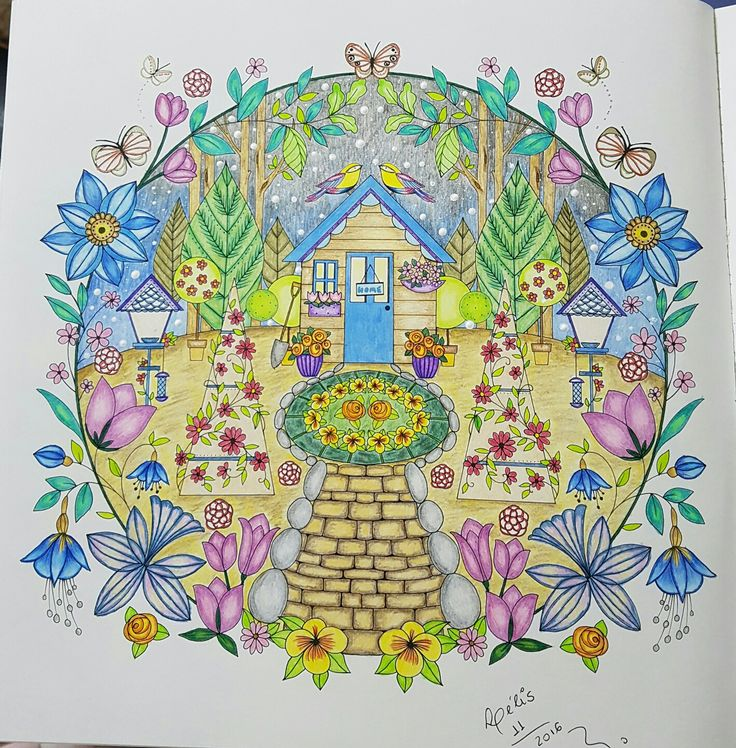 Joyous Blooms To Color Coloring Book Com Lapis De Cor Polycolor Colorido Por