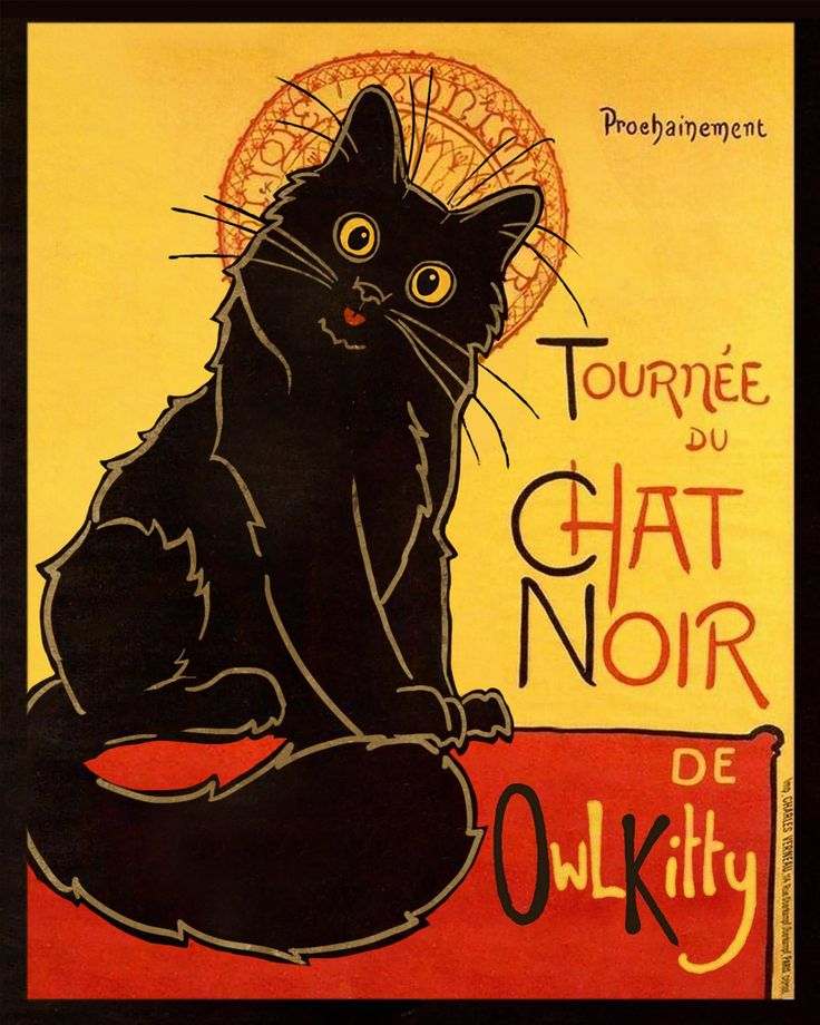 Pin by Trace on Cat's Meow Black cat art, National black