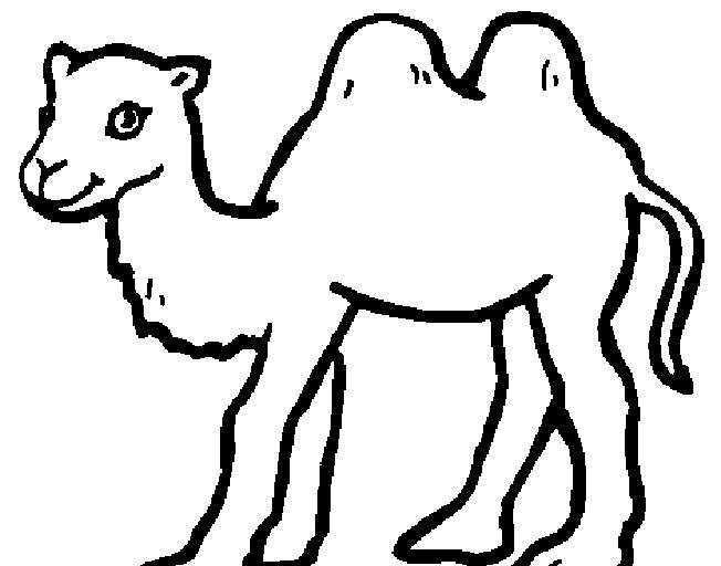 Okul Oncesi Deve Boyama Google Arama 2020 Hayvanlar Deve Okul Oncesi