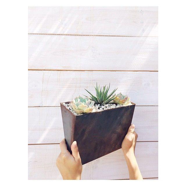 Terren Blumenkübel | Die Besten 25 Aufhangegurte Ideen Auf Pinterest