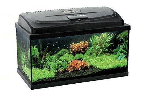 Aquael Aquarium Set LEDDY LED 100, 200 Liter komplett Aquarium mit moderner LED Technik