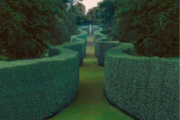 The Serpentine Hedge at Chatsworth. A wavy hedged beech corridor that leads from…