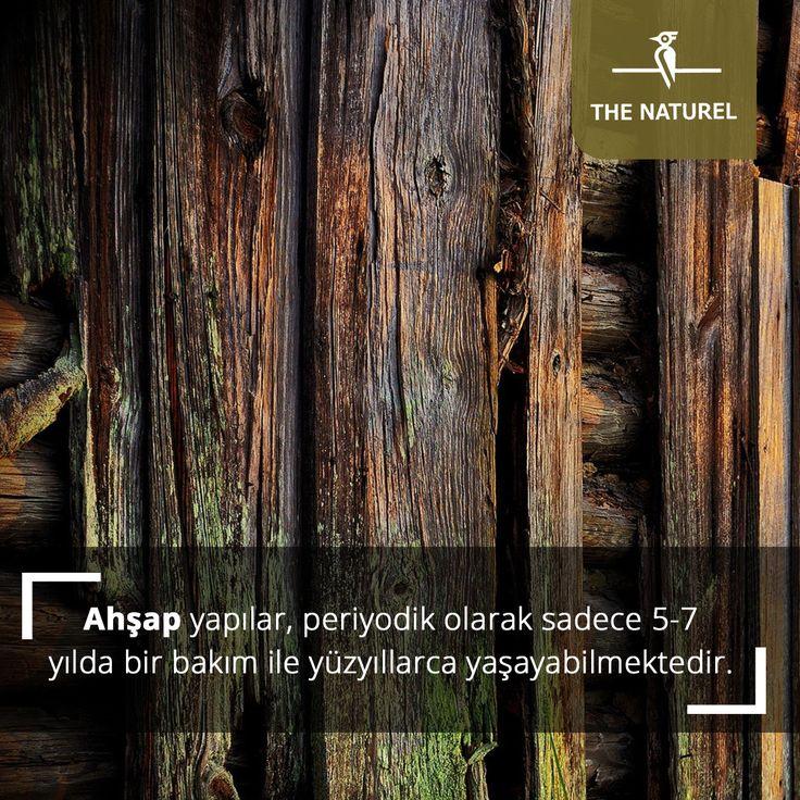 Ahşap yapılar, periyodik olarak sadece 5-7 yılda bir bakım ile yüzyıllarca yaşayabilmektedir. #thenaturel  #ahşapuygulama #ahşapproje #woodproject #wood #ahşap #proje #doğal #naturel #dayanıklı#ahşapduvarkaplama #ahşapdışcephe #sağlam #ahşapproje #uygulama #wood#nature #woodproject #woodpro #woodapplications #woodworking#woodwork #woodstyle