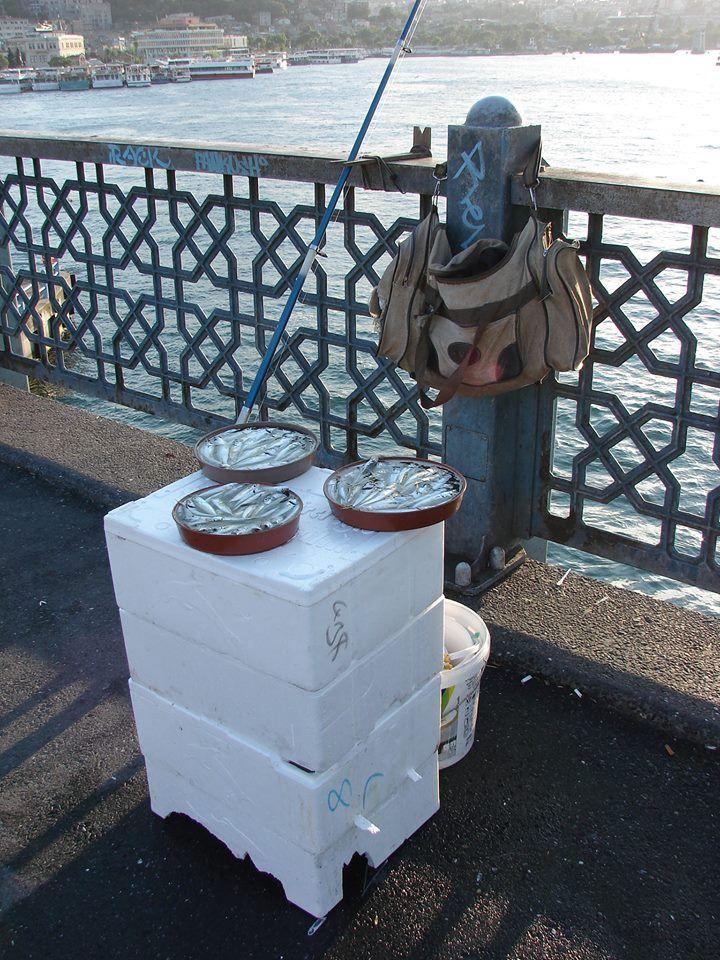 Hoy almorzamos pescado MUY fresco de El Bósforo, Estambul. #DionisioPimiento #Food #Foodie