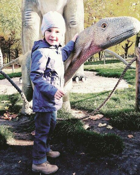 Dinozaurrr