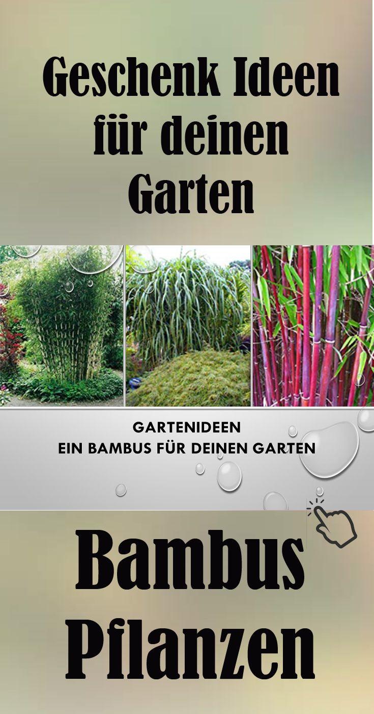 Garten geschenk blumen