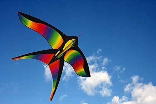 Huge Beginner Kite For Sale, Rainbow Bird with String, Perfect Kites for Kids,