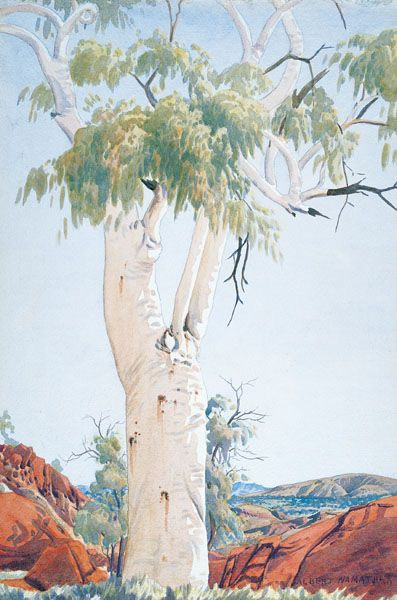 Albert Namatjira Ghost gum, Glen Helen c.1945-49 watercolour over pencil on paper Private collection Melbourne