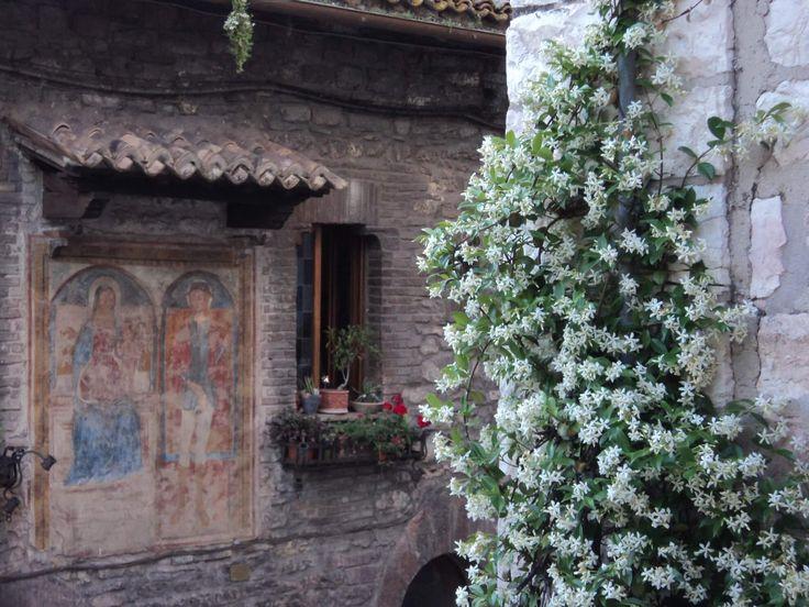 Sito web realizzato da SiamoAlCompleto per Davide, proprietario del B&B A Casa Tua di Assisi