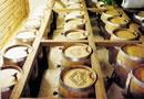 Tamborine Mountain Distillery, Gold Coast, Australia