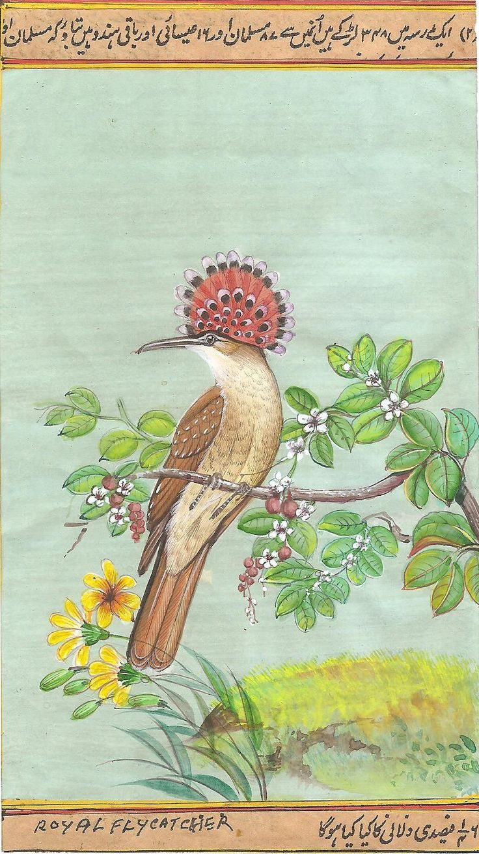 Royal Flycatcher Bird Painting Handmade Indian Miniature Ornithology Nature Art