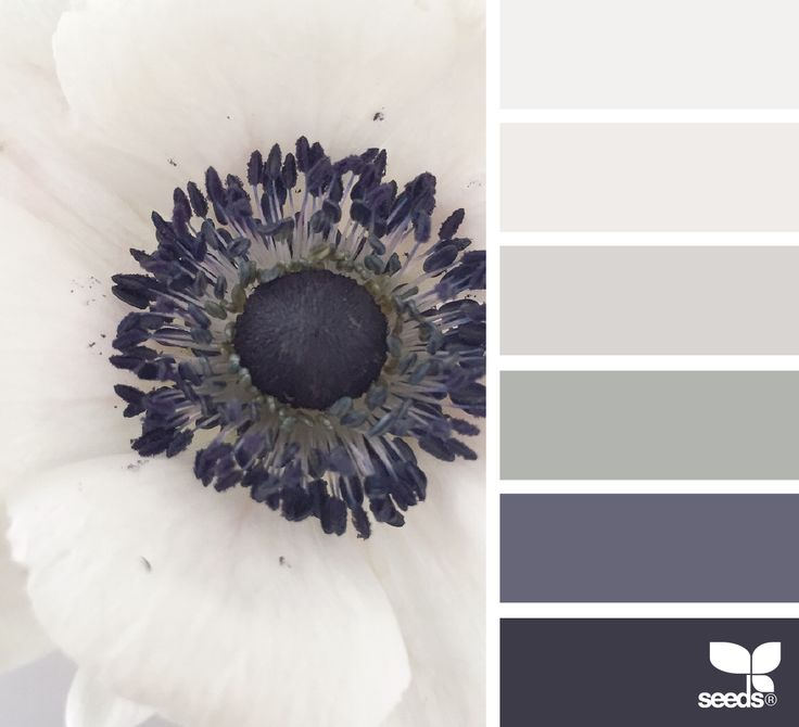 Shop www.mccoys.com for Glidden paint with primer that can be color-matched to any shade. #paintpalettes