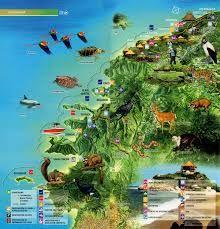Resultado de imagen para rutas de viaje parque tayrona