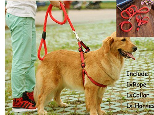 Pet Leash Collar Harness Set Linka Woven Nylon Dog Leash  Collar Set Adjustable Dog Cat Leashes for Outdoor *** Details can be found by clicking on the image.Note:It is affiliate link to Amazon.
