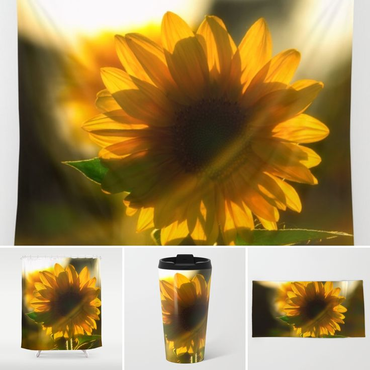 Free Shipping today ❗️ Sunflower Moments a new work from me #tanjariedel #s6 #society6 #society6art #spa #sunflower #sunflowers #instaflower #instasun #instashop #instaweek #instasale #instadeco #instadecor #instapattern #instainterior #instasun #instasunflower #patterns #nature #natur #sonne #sonnenblume #muster 👉🏼 https://society6.com/tanjariedel👈🏼
