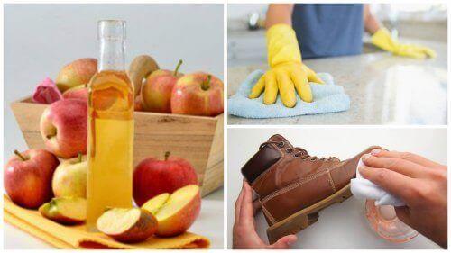 Ben jij ook geïnteresseerd in milieuvriendelijke schoonmaakproducten? Lees dan dit artikel om erachter te komen waar appelazijn allemaal voor kan dienen.