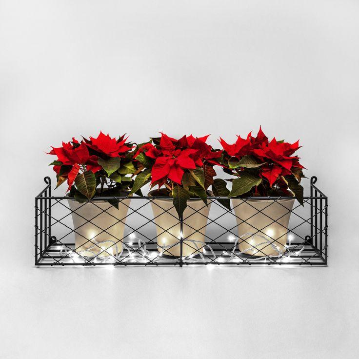 Blumenkasten Weihnachtlich Dekorieren 1085 best weihnachtsdeko images on