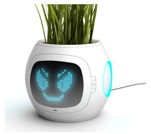 Pet Plant: this high tech pot reads soil  for nutrients, humidity, and temperature. Then the LCD screen displays a face showing how the plant 'feels'.