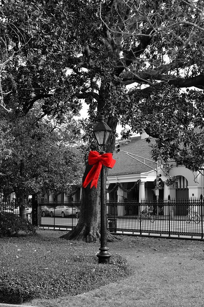Christmas in Jackson Square, New Orleans Louisiana