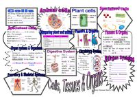 Revision maps for Key Stage 3 2 KS3 KS2 Science Biology Chemistry Physics - Resources - TES
