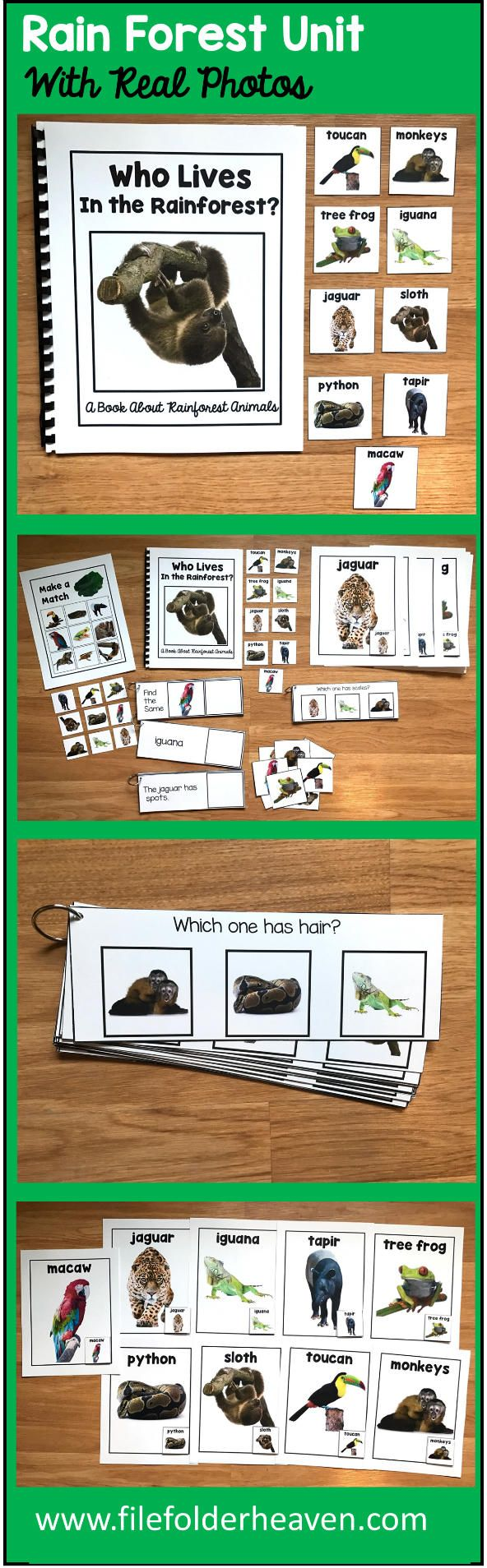 "This Rainforest Unit w/Real Photos is packed full of hands-on activities for your rainforest theme.  Activities Included With This Rainforest Unit:  1. Adapted Book (Interactive Book) w/ interactive matching pieces 2. 1 Set of Interactive Bulletin Board Rainforest Animals Posters (9 total) 3. Rainforest Animals Non-Identical Matching Mat 4 3 Sets of ""Big Flips"" Matching Activities  5. 1 Set of Rainforest WH-Questions"
