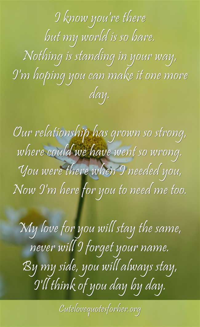 Short I Love You Poems for Her (5)