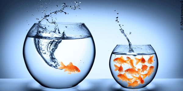 Kreativ, innovativ und erfolgreich zu sein, bedeutet oft, andere Wege als die Masse zu gehen. Konformität erzeugt keine Reize und erst recht keine Veränderung. Die ist jedoch allgegenwärtig und es gilt, Wege zu finden, damit zurecht zu kommen.