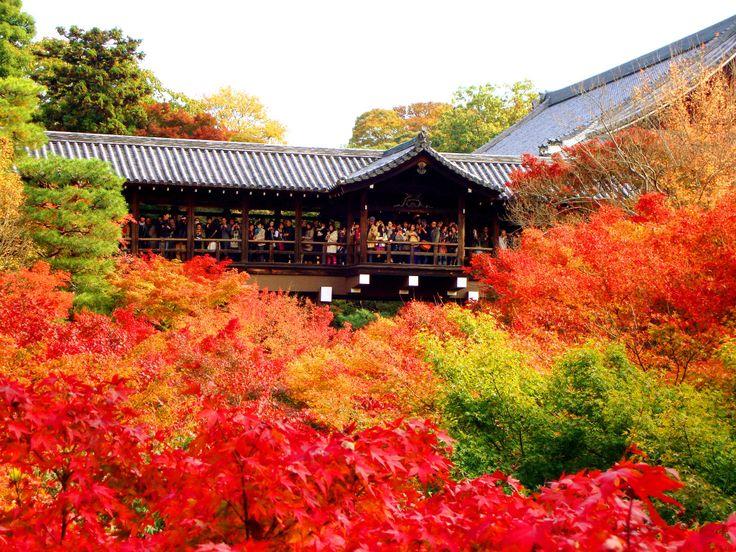 Tofuku-Ji, Kyoto, Japan 2012