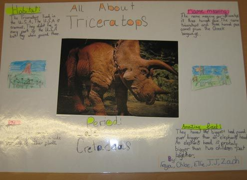 Poster making - a great way to check learning and factual ...